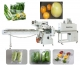 vegetable and fruit packaging machine